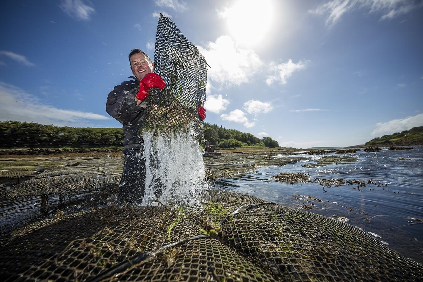 Croagh Patrick Seafood Tours