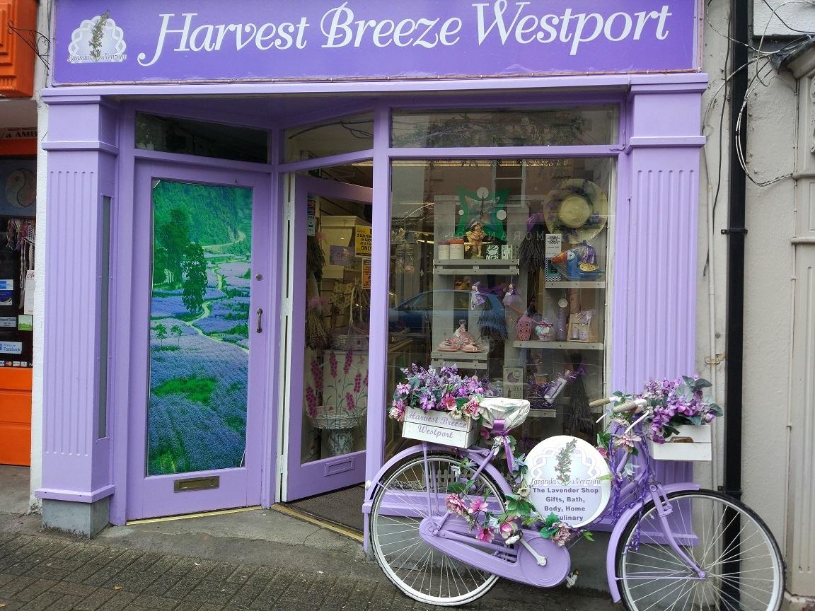 Harvest Breeze Westport