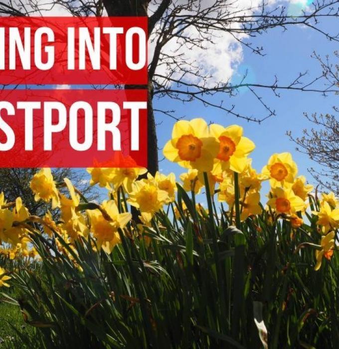 Six Signs of Spring in Westport