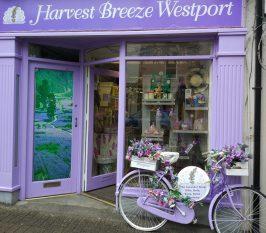 Harvest Breeze Westport  - Destination Westport